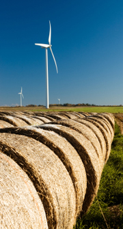 Turbines over farmland